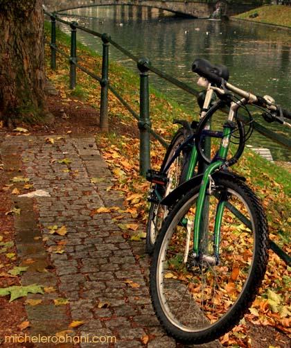 fall, autumn, leaves, foliage, bike, europe, river