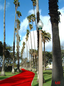 red carpet in santa monica micheleroohani