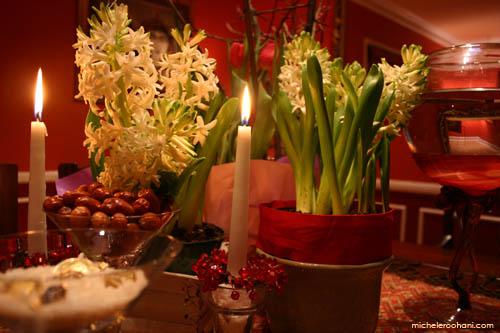 norooz hyacinth micheleroohani