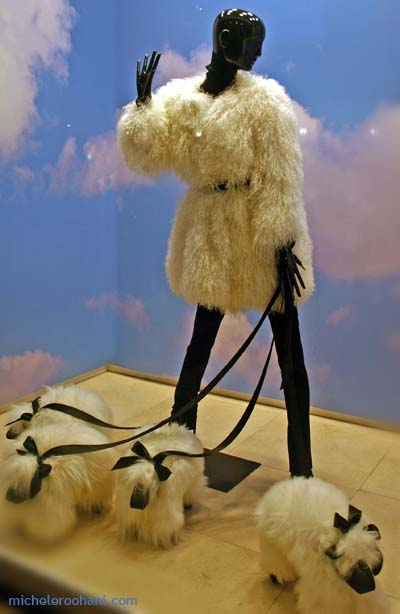 window fur coat with dogs michele roohani