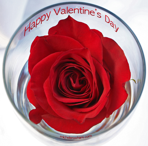 valentine 2009 michele roohani roses in a glass