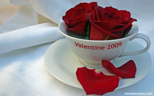 valentine 2009 michele roohani roses in a tea cup