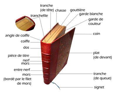 bookbinding jargons michele roohani