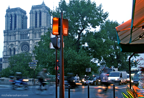 notre dame paris michele roohani morning