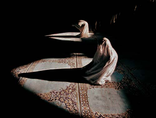 iranian women parying jamshid bayrami michele roohani photoquai