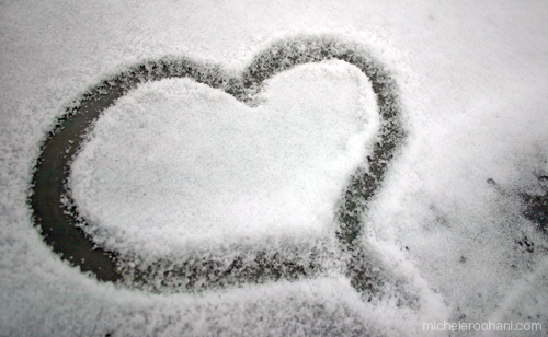 michele roohani snow heart