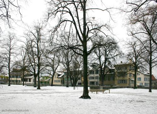 michele roohani snow lindenhof zurich