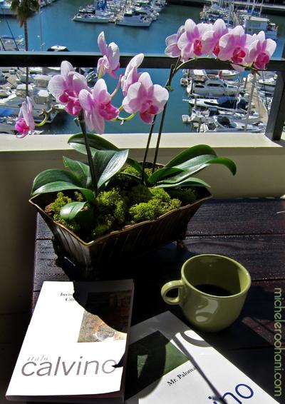 italo calvino michele roohani pink orchids