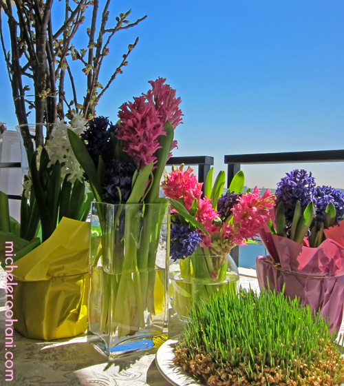 sabzeh hyacinth norouz michele roohani marina del rey
