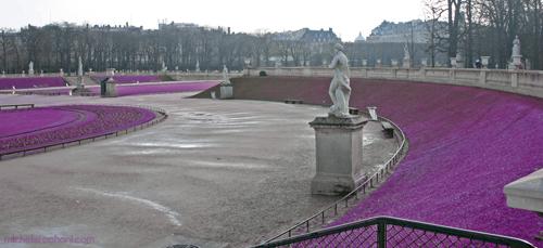 purple jardin du luxembourg violet michele roohani