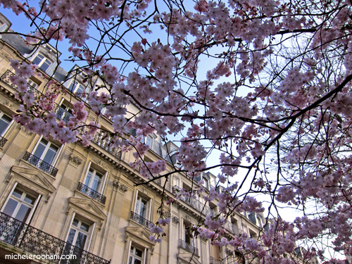 spring in paris 2011 michele roohani