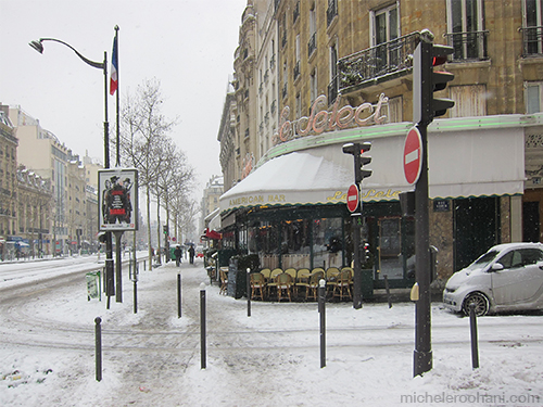 cafe select in snow michele roohani