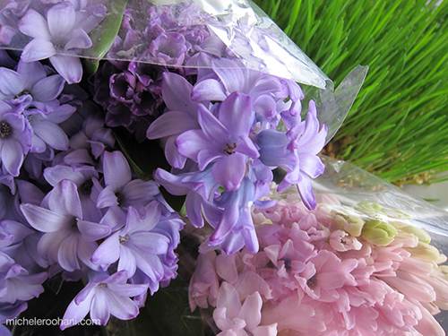 hyacinths michele harper